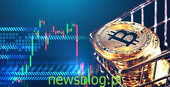 bitcoiny za darmo