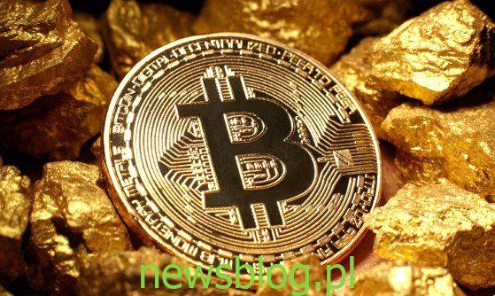 bitcoin / gold