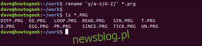 zmień nazwę 'y / az / AZ /' * .prg w oknie terminala