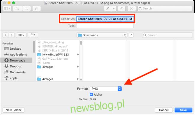 Kliknij menu rozwijane Format, aby wyświetlić wszystkie opcje formatu pliku