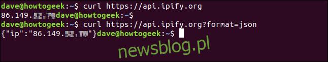 curl https://api.ipify.org w oknie terminala