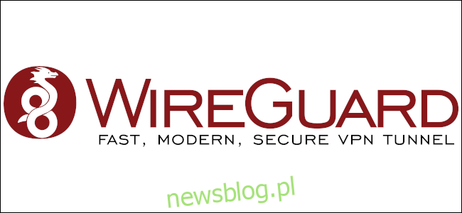 Logo WireGuard.