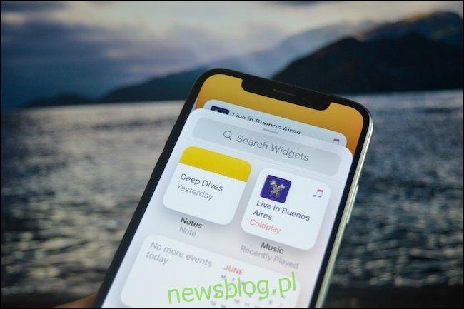 Strona wyboru widżetu w iOS 14