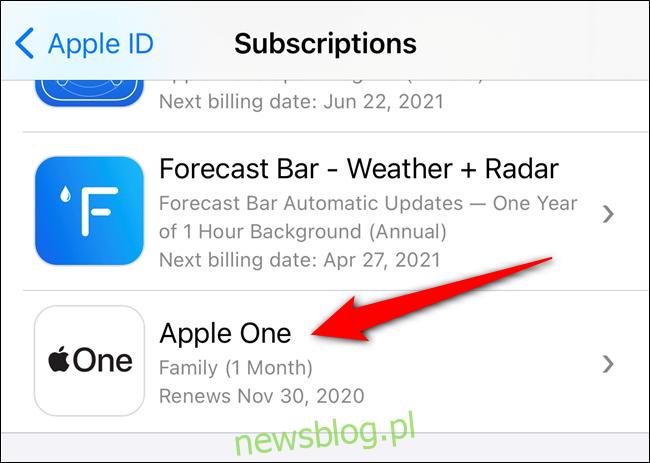 Wybierz swoją subskrypcję Apple One z listy