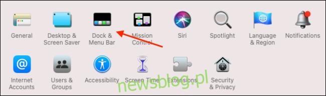 Kliknij Dock i pasek menu w Preferencjach systemowych