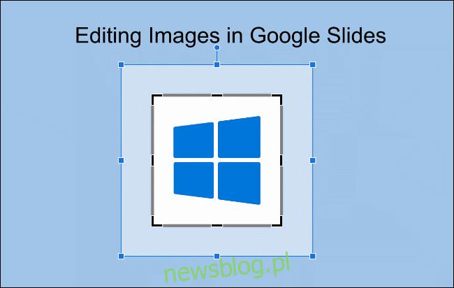 Za pomocą myszy zaznacz obszary obrazu, które chcesz przyciąć w Prezentacjach Google