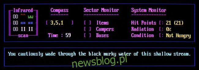 Działanie gry BBS Door:
